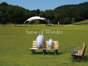 茨城のアートな野外フェス<Sense of Wonder 2010>第1弾アーティスト発表