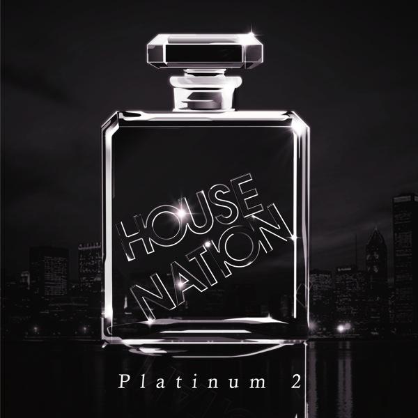 House Platinum: 2NE1も初収録、100%パーティーチューンな『HOUSE NATION Platinum 2』