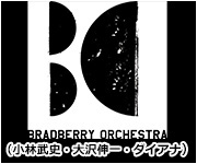 BRABERRY ORCHESTRA