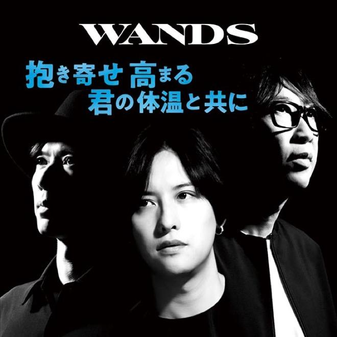 WANDSの画像 p1_38