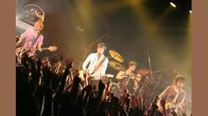 LUNKHEAD、ツアーファイナルで初ベストのリリースを発表