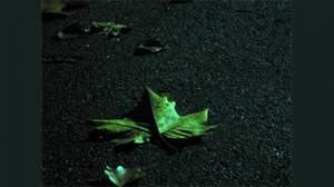 2009年の音楽シーン、漢字1文字で「逝」
