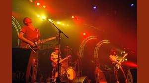 チリヌルヲワカ、横浜BRITZライブでのパワフルなパフォーマンスに歓声