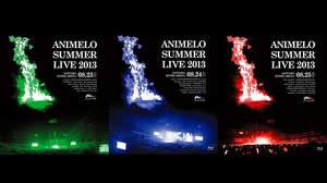 <アニサマ2013>、大ボリュームのBlu-ray&DVDがリリース