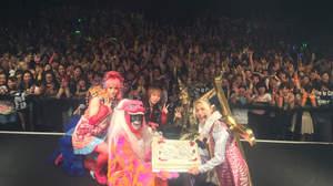 【短期リレー連載】Psycho le CémuのTHE WORLD TOUR DIARY@名古屋ダイヤモンドホール「サイコルシェイムは不思議なバンド。」(seek)