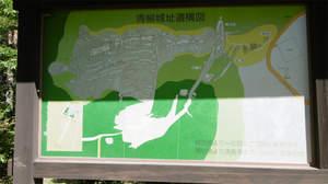 【連載】中島卓偉の勝手に城マニア 第63回「青柳城(長野県)卓偉が行ったことある回数 1回」
