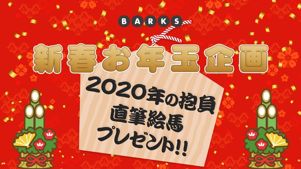 【BARKS 新春お年玉企画】「2020年の抱負」直筆 絵馬プレゼント