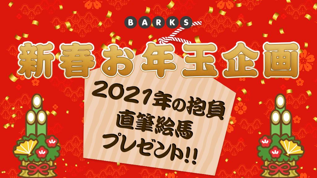 【BARKS 新春お年玉企画】「2021年の抱負」直筆 絵馬プレゼント