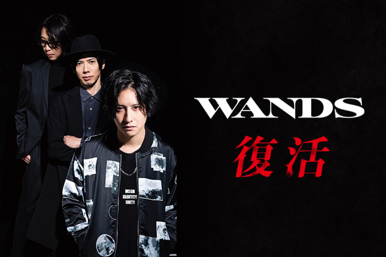 【特集】WANDS、復活